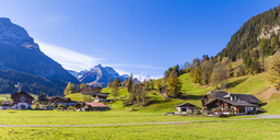 Switzerland, Canton of Bern, Gstaad, alpine meadow and farmhouses - WDF04300