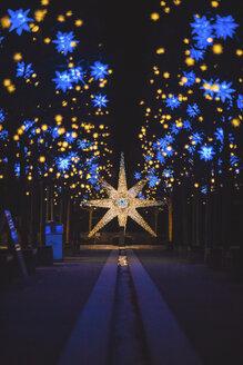 Germany, Berlin, Christmas decoration, Moravian star - ASCF00764