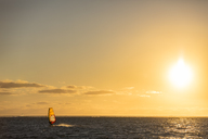 Mauritius, Le Morne, Indian Ocean, sail boarder at sunset - FOF09766