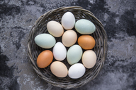 Different eggs, white, brown, light brown and green eggs - SARF03480
