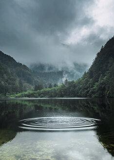 Austria, Salzburg State, Salzkammergut, St. Gilgen, Krotensee Lake, fog - WVF00903