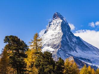 Switzerland, Valais, Zermatt, Matterhorn, trees in autumn - WDF04349