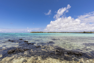 Mauritius, South Coast, Indian Ocean, Blue Bay, Blue Bay Marine Park - FOF09784