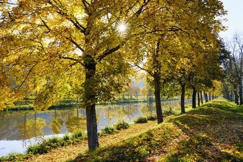 Germany, Bavaria, Lower Bavaria, near Essing, Altmuehl valley, Ludwig-Danube-Main Canal - SIEF07679