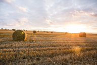 France, Normandy, Yport, straw bales on field at sunset - JATF01011