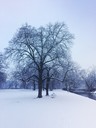 Germany, Cologne, snow in city park, Green Belt, city district Lindenthal - GWF05393