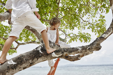 Thailand, Phi Phi Islands, Ko Phi Phi, boy and little girl climbing on a tree on the beach - RORF01100