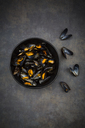 Organic blue mussels in bowl - LVF06620
