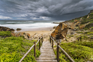 Africa, South Africa, Western Cape, Plettenberg Bay, Robberg Nature Reserve - FPF00147
