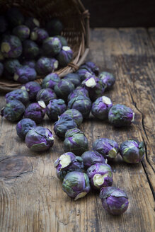 Purple brussels sprouts - LVF06635