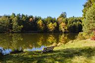 Germany, Bavaria, Lower Bavaria, Bavarian Forest, Lake Dreiburgensee - SIEF07692