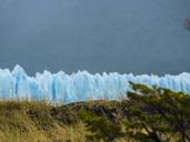 Argentina, Patagonia, El Calafate, Glacier Perito Moreno - AMF05622