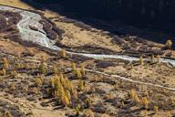 Switzerland, Valais, Gletsch, Rhone river in autumn - WDF04379