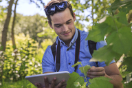 Portrait of relaxed man using tablet in nature - ZEF14939