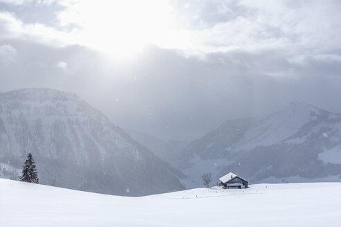 Austria, Salzburg State, Osterhorn group, ski area, winter landscape in winter - HAMF00263