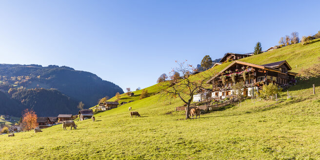 Switzerland, Bern, Bernese Oberland, - WDF04399