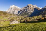 Switzerland, Bern, Bernese Oberland, holiday resort Grindelwald, Wetterhorn, Schreckhorn - WDF04402