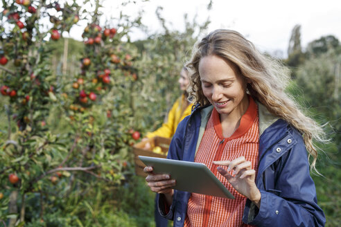 Smiling woman using tablet in apple orchard - PESF00891