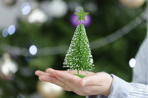 Little boy holding a toy Christmas tree, close up - LBF01753