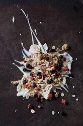 Fruit muesli with dried fruits on yoghurt splash - CSF28866