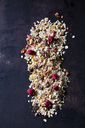 Fruit granola with dried raspberries, strawberries and cranberries - CSF28872
