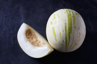 Snowball Melon on dark ground - CSF28884