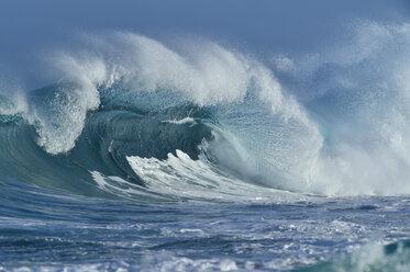 USA, Hawaii, Oahum, Pacific Ocean, big dramatic wave - RUEF01814