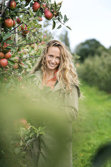 Portrait of smiling woman in apple orchard - PESF00950