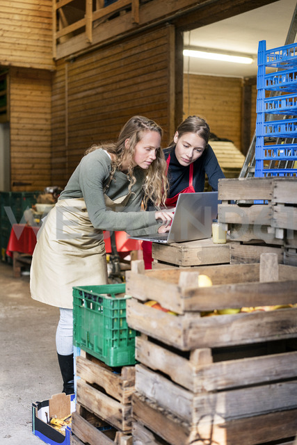 Two women using laptop between crates on a farm - PESF00977 - Peter Scholl/Westend61