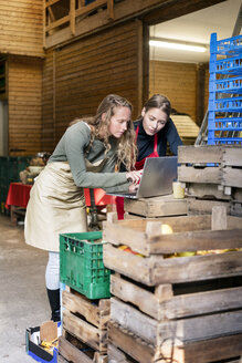 Two women using laptop between crates on a farm - PESF00977