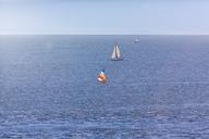 Canada, British Columbia, Vancouver, Sailing boats - MMAF00236