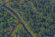 USA, Alaska, Talkeetna: Aerial view of river and forest - MMAF00275