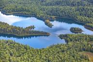 USA, Alaska, Talkeetna: Aerial view of river and forest landscape - MMAF00284