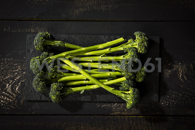 Sprouting broccoli - MAEF12521