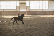 Woman riding horse in training stable - FSIF00256