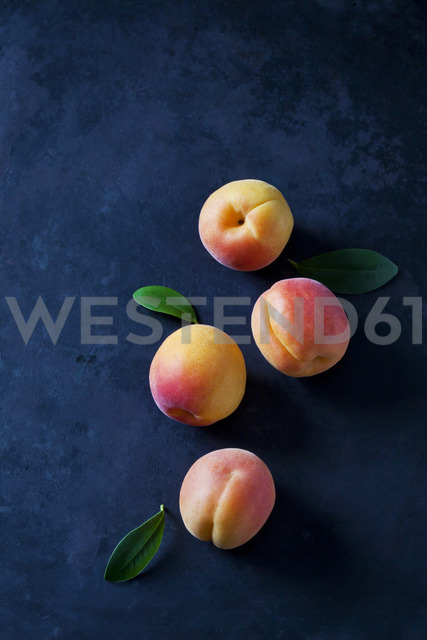 Four apricots on dark ground - CSF28889