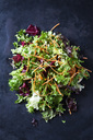 Mixed salad with lettuce, radicchio and carrots - CSF28898