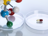 Molecular model next to a capsule in petri dishes - ABRF00095
