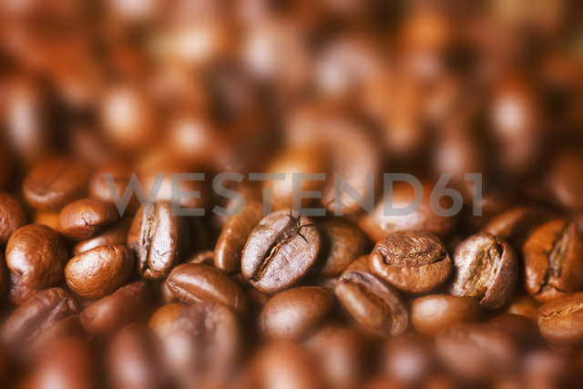 Roasted coffee beans - JTF00909