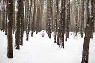 A young girl walking down a snow packed path in the forest - FSIF00604