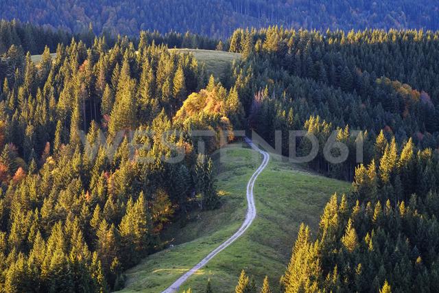 Germany, Bavaria, Upper Bavaria, Isarwinkel, View from Zwiesel near Wackersberg, pasture way - SIEF07719