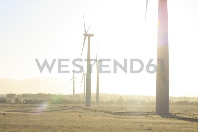 Wind farm at sunset - ZEF14984