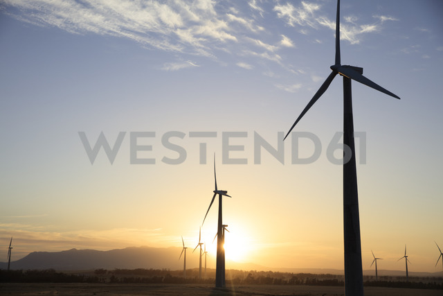 Wind farm at sunset - ZEF14990