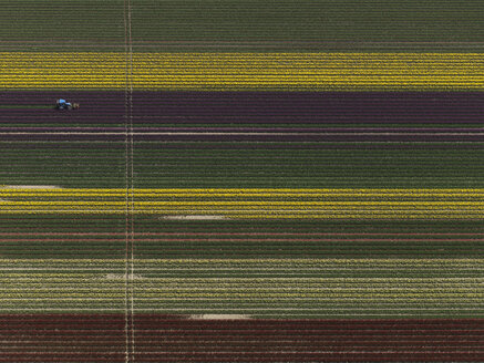 Aerial view of various crops in agricultural field, Stuttgart, Baden-Wuerttemberg, Germany - FSIF01302