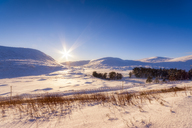 United Kingdom, Scotland, Highlands, landscape in winter against the sun - SMAF00927