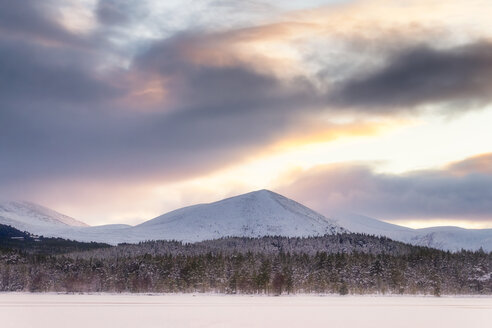United Kingdom, Scotland, Highlands, Cairngorms National Park, Loch Morlich, sunset - SMAF00930