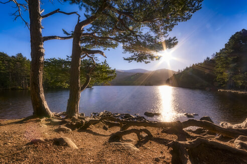 United Kingdom, Scotland, Highlands, Cairngorms National Park, Loch an Eilean, winter - SMAF00945