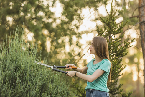 Young woman cutting plants with pruning shears at yard - FSIF01392