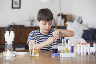 Boy concentrating on school science project at table - FSIF01434