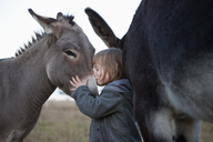 Side view of cute girl kissing donkey on field - FSIF01479